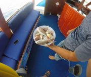 Dalyan Sea Fishing - 8