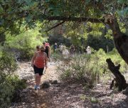 Dalyan trekking - Dalaman Kapidag penninsula - walking in the forrest