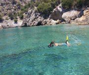 Dalyan Snorkelling - Searching for sealife