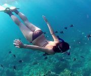 Dalyan Snorkelling - swimming with fishes