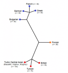 Genetic Tree of Neighbouring Populations