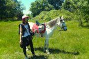 Dalyan Horse Riding Safari 1