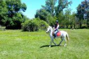 Dalyan Horse Riding Safari 4