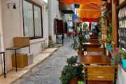 Dalyan Volkans Adventure-Mediterranean Highlights Tour to Patara, Kalkan, Kaş - 019