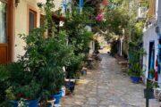 Dalyan Volkans Adventure-Mediterranean Highlights Tour to Patara, Kalkan, Kaş - 032