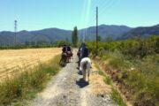 Dalyan Horse Riding Safari 2