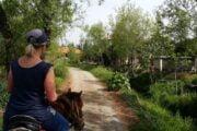 Dalyan Horse Riding - 6