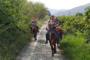 Dalyan Horse Riding - 8