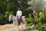 Dalyan Horse Riding - 9