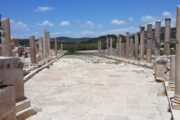 Dalyan Excursion - Mediterranean Highlights - patara - Main Road in Ancient city