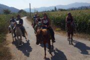 Dalyan Horse Riding - 4