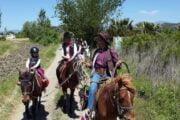 Dalyan Horse Riding Safari 8