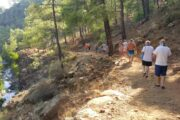 Yuvarlakcay - Topgozu - Toparlar Waterfall Trip - 13