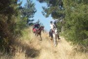 Dalyan Horse Riding Safari 10