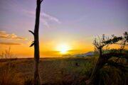 Volkans Adventures - Dalyan - Boat Trips - Sunset, moonlight - Noon to moon - 7
