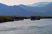 Private Dalyan Boat Trip - Big dalyan