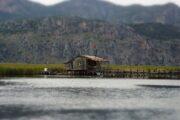 Private Dalyan Boat Trip - Little Dalyan