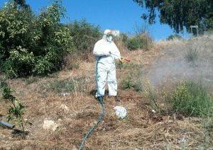 Dalyan Mosquito Combat 5
