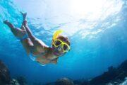 Diving in Dalyan 14