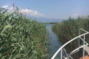 Volkan's Adventures Dalyan - Köyceğiz Evening Market Tour - Koycegiz Lake Moonlight Boat Trip - 004