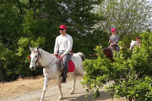 Dalyan Sunset Horse Safari - Riding countryside of Dalyan
