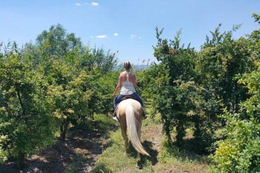 Dalyan Sunset Horse Safari - Ride through pomegranate fields