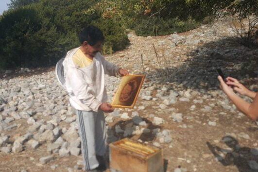 Dalyan trekking - Dalaman Kapidag penninsula - Mustafa Amca
