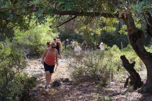Dalyan trekking - Dalaman Kapidag penninsula - walking in the forrest