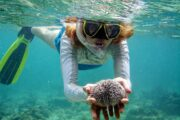 Dalyan Snorkelling - sea urchin