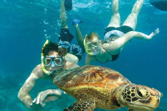 Dalyan Snorkelling - swimming with Caretta