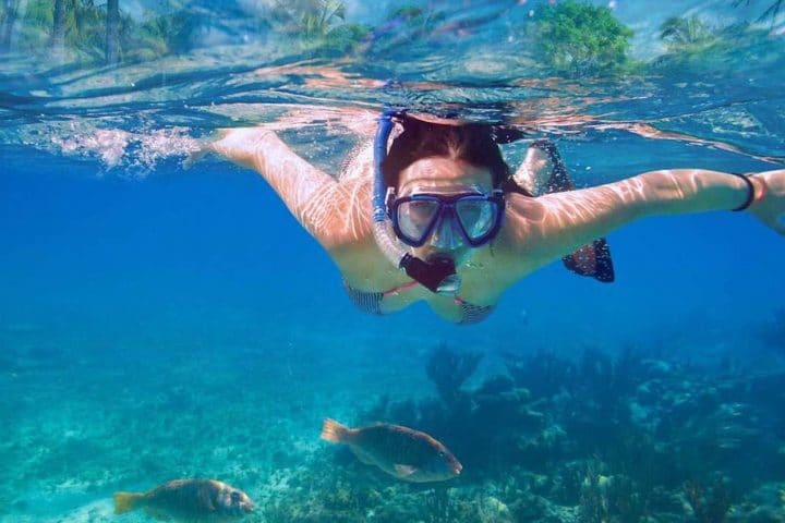 Dalyan Snorkelling - Main Picture