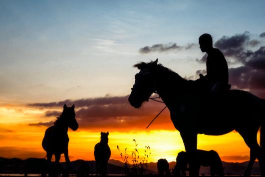 Dalyan Sunset Horse Safari - Views of Koycegiz Lake