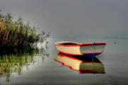 Volkan's Adventures Dalyan - Köyceğiz Evening Market Tour - Koycegiz Lake Moonlight Boat Trip - 058