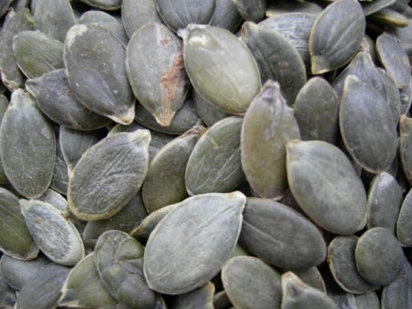 Turkish dried fruit and nuts - melon seeds