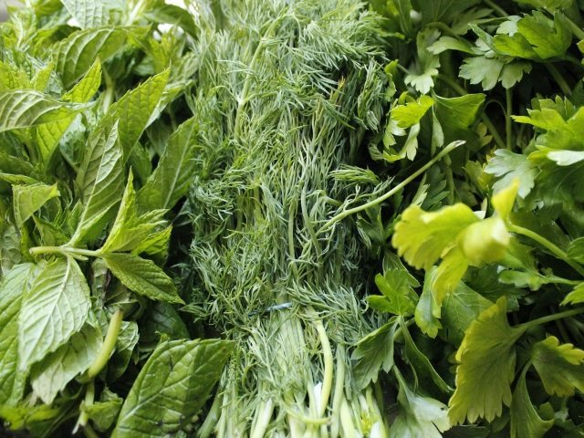 Turkish Herbs - Selection of herbs