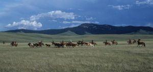 Silk Road - Plains of Anatolia