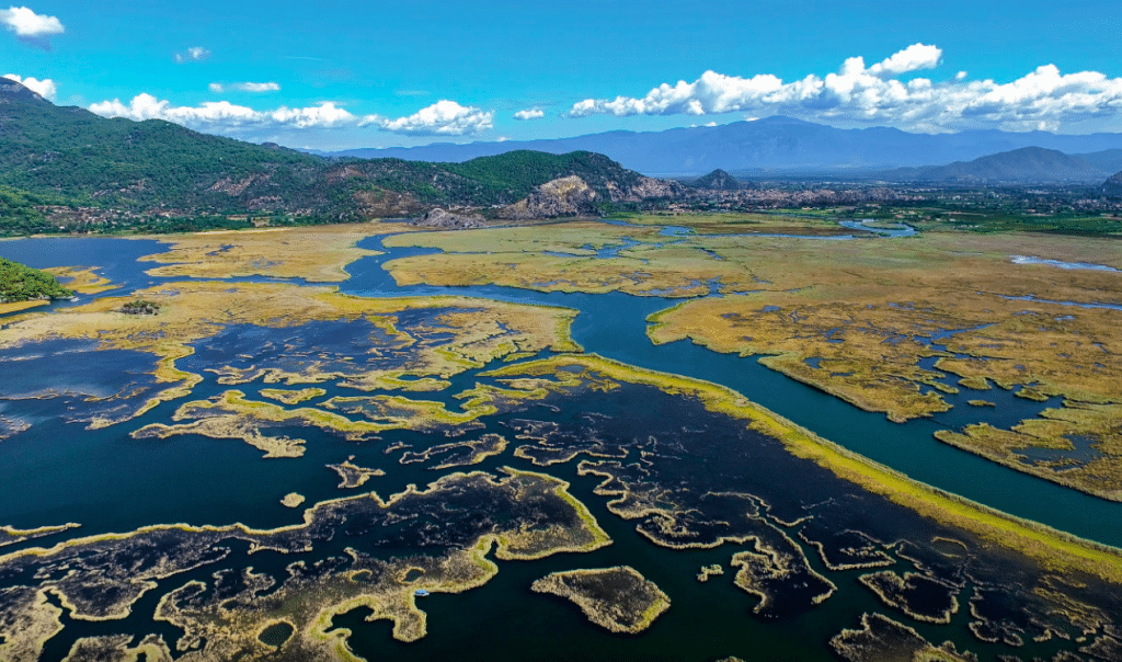 Dalyan Delta and Reed Beds