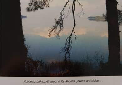 koycegiz lake picture from forest