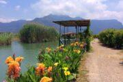 Dalyan Kingfisher Restaurant - dalyan Yalicapkini Restaurant - 19