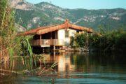 dalyan kingfisher restaurant - uzumlu - camianda - morchella esculent - gocek lotis restaurant - best dalyan tour ever - 7