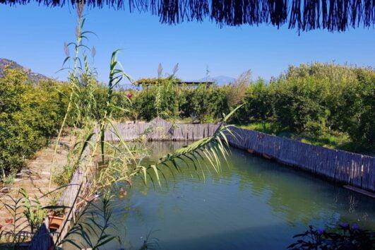 Dalyan Kingfisher Restaurant - dalyan Yalicapkini Restaurant - 3