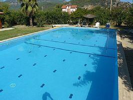 violet pool