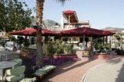 dalyan kingfisher restaurant - uzumlu - camianda - morchella esculent - gocek lotis restaurant - best dalyan tour ever - 28
