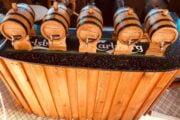 Volkan's Adventures - evening wine tasting - 131
