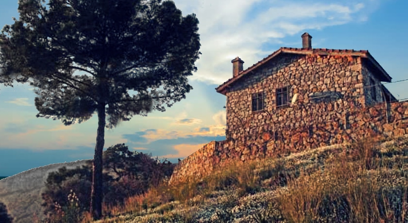 Dalyan Guide - Accommodation Suggestion - Private Villas for Rent - Dalyan Palm House - 7