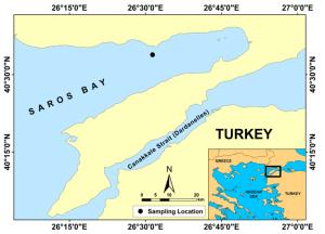 Saros Bay