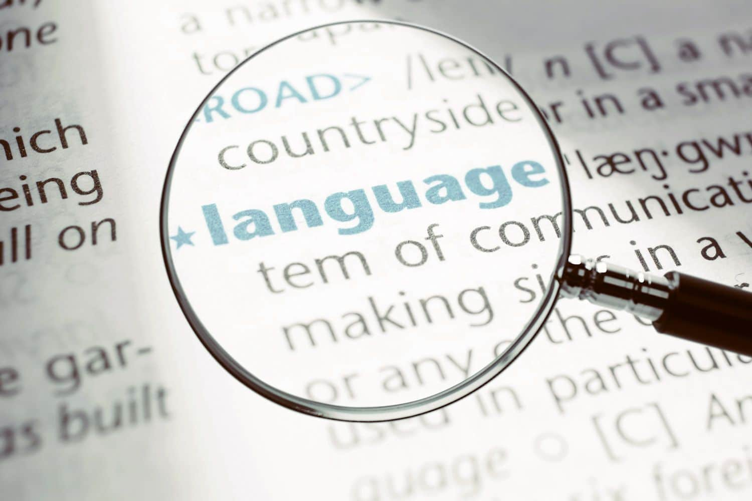 The importance of language