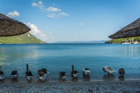 Dalyan tours - road To paradise - karabörtlen breakfast - Akyaka - Akbük - 5