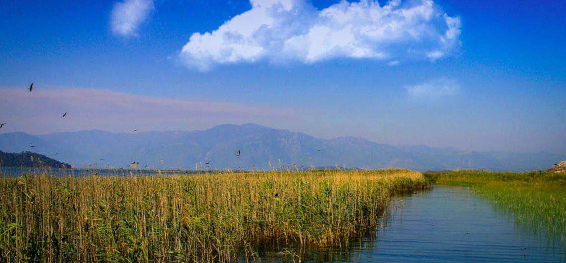 Dalyan-Koycegiz natural reserve
