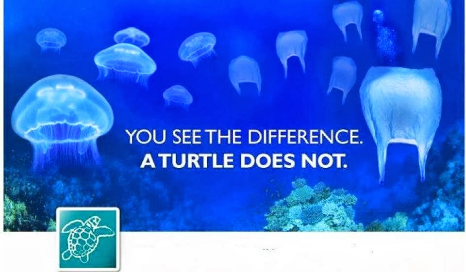 Plastic bags are dangerous to sea turtles